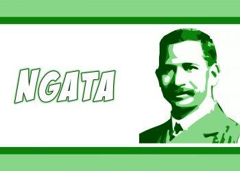 Ngata Banner b